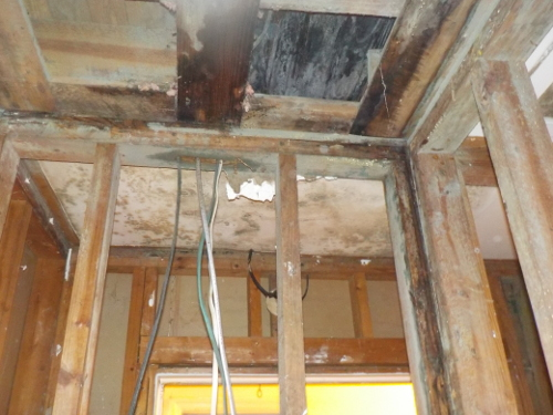 Water and Mold Damage   Dependable Remediation Services August GA